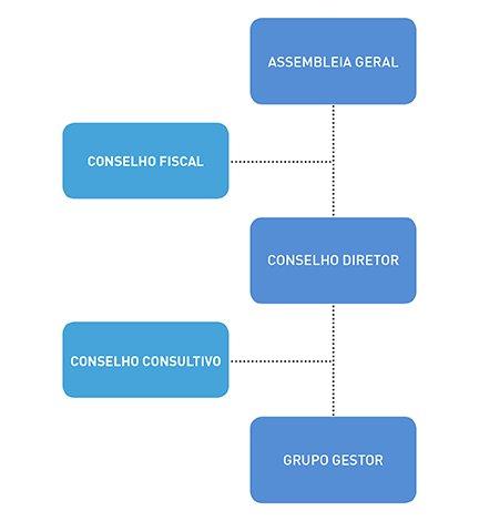Organograma Instituto TIM
